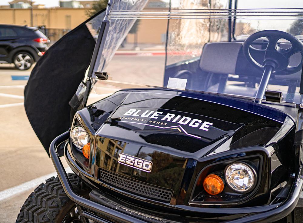 Blue Ridge minicart